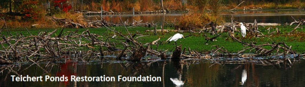 Teichert Ponds Restoration Foundation